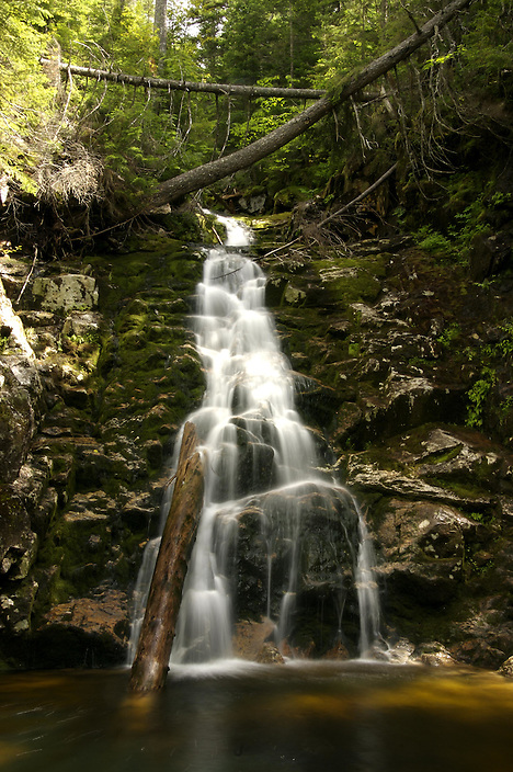 A hidden gem of a waterfall, this fifteen foot beauty can be found by determined hikers in Crawford Notch, in New Hampshires White Mountains.
