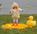 "REPRO FREE 31-3-2013:<br /> Hundreds turn out for Think Big's Duck-a-thon in Tralee.<br /> <br /> Alice O'Connor (2) all set for the Think Big's Headstrong Duck-a-thon on the canal in Tralee, County Kerry at the weekend. <br /> <br /> Over 500 people and over 500 ducks participated in a unique fundraising event for Headstrong called the Duck-a-thon in Tralee yesterday.  The Duck-a-thon is a fun fundraising event created to raise awareness about positive mental health in the local community. The idea was created by 17 year old local Dylan Hartnett who wanted to do something unique to positively benefit his local community as part of the Think Big programme. Over 500 rubber ducks were released into the Canal in Tralee yesterday and it took almost 20 minutes for the winner to cross the finish line.<br /> Speaking at the event, Dylan said: ""It's been a great success so far and we're delighted with the turn out today. I wanted to create something that was fun and captured peoples imagination and as far as I know this is the first time anything like this has been done in Tralee. A big thank you to all those involved who've helped me organise today and we look forward to donating all funds from the event to Headstrong"".<br />  <br /> Pictured here at the event were <br />  <br /> Think Big is a programme to inspire young people around the country to promote positive mental health in their local community.  Think Big was created by O2 in partnership with Headstrong and is open to any young person in the Republic of Ireland, aged between 14 and 25, with an idea for a project that will make a difference to young people's mental health. In addition to funding, each Think Big project group gets support from O2 and Headstrong in the form of mentoring and training to help them to bring their project to life.  Projects are encouraged to incorporate digital and social media elements.  <br />  www.o2thinkbig.ie<br />  For further information contact Fionnuala Kavanagh on 01 4751444 or email Fionnuala@q4pr.ie"
