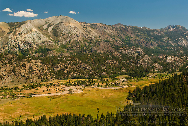 Leavitt Meadow, Toiyabe Natilonal Forest, Mono County, California