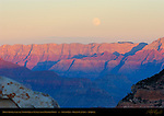 Moon Rising over the North Rim at Sunset from Mather Point, South Rim, Grand Canyon, Arizona