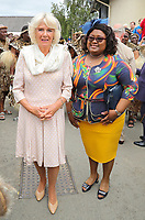 22 July 2019 - Builth Wells, UK - Camilla Duchess of Cornwall and Prince Charles, Prince of Wales at the 100th Royal Welsh Show in Builth Wells, Wales.The Royal Welsh Show is the biggest agricultural show in the United Kingdom. Photo Credit: ALPR/AdMedia