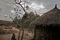 Children play on trees during marriage celebrations of two village children, girls Etinesh, 11 and torokan, 8,   sold into marriage in a village in Northern Amhara region on February 14, 2009 in Ethiopia..While in decline, early child marriage is still widely spread in rural areas of Ethiopia where families sell their daughters into marriage at ages as young as 5 years old...Names of subjects have been fictionalized and specific locations have been omitted to protect the identities of the children portrayed in the story.
