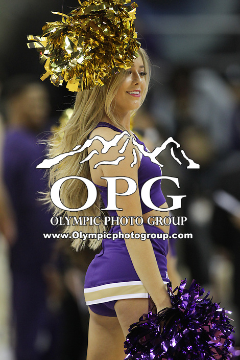 SEATTLE, WA - DECEMBER 18: Washington cheerleader Dani Mcginnis entertained fans during a timeout break against Western Michigan.  Washington won 92-86 over Western Michigan at Alaska Airlines Arena in Seattle, WA.