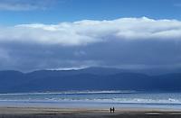 Ireland, Kerry, Dingle Peninsula, couple walking in distance along deserted Inch Beach