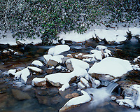Winter scene along the Little River; Great Smoky Mountains National Park, TN