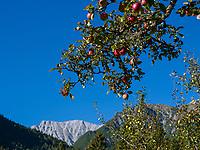 Berge bei Teilwiesen, Imst. Tirol, &Ouml;sterreich, Europa<br /> Mountains near Teiwiesen, Imst, Tyrol, Austria, Europe