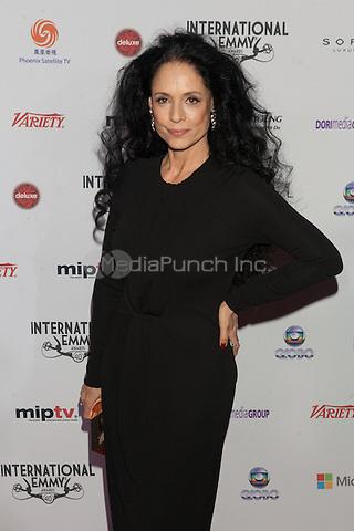 NEW YORK, NY - NOVEMBER 19: Sonia Braga at the 40th International Emmy Awards in New York. November 19, 2012. © Diego Corredor/MediaPunch Inc.