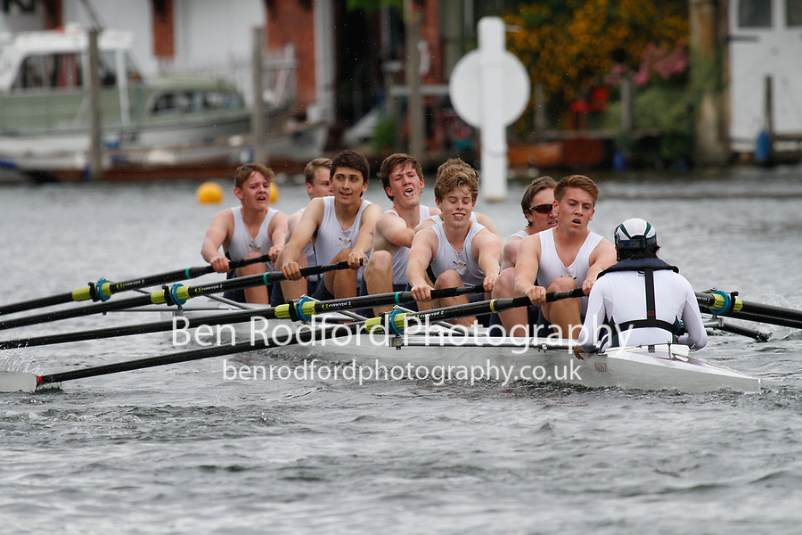 135   The King's School, Chester - The Temple Challenge Cup<br /> <br /> Henley Royal Regatta Qualifiers {iptcyear4}<br /> <br /> To purchase this photo, or to see pricing information for Prints and Downloads, click the blue 'Add to Cart' button at the top-right of the page.