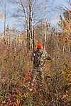 Ruffed grouse hunting in autumn