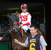 9th New York Stakes - Homerique