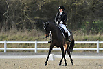 11/03/2017 - Class 7 - Medium 61 - British Dressage - Brook Farm training centre