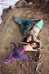 Jamison mermaid