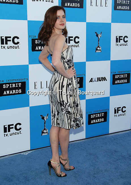 Amy Adams arriving at the Film Independent's 22th SPIRIT AWARDS in Santa Monica Beach in Los Angeles.<br /> <br /> full length<br /> smile<br /> eye contact<br /> black/white dress<br /> over the shoulder