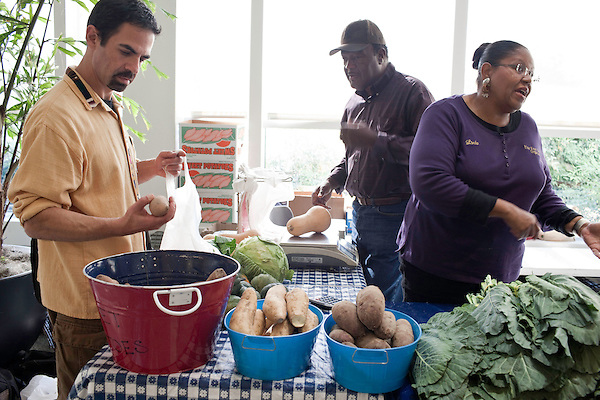 November 23, 2010. Chapel Hill, NC.. Josh Lozoff, a local magician, looks over the sweet potatoes sold by Stanley Hughes, center, and Linda Leach, his wife at the UNC Hospital Farmer's Market..   The sweet potato seems to be having a comeback, with many farmers increasing their planting of the potato's numerous varieties, as well as many restaurants including it on their menu in various forms such as the ever popular sweet potato fry.