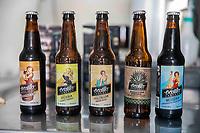 Cerveza Ocotillo BEER