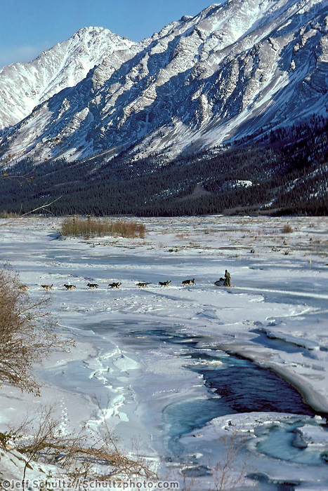 Musher John Cooper @ South Fork of Kuskowim River AK 1985 Iditarod near Rohn