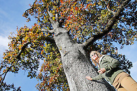 NWA Democrat-Gazette/DAVID GOTTSCHALK  Kathryn Scherer, of Fayetteville, describes the more than 150 year old White Oak Tree Monday, October 26, 2015, that she has been watering on South Armstrong Avenue in Fayetteville. Scherer is seeking donations towards watering and caring for the tree.