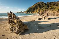 Smoothwater Bay near Jackson Bay, South Westland, West Coast, South Island, World Heritage Area, New Zealand