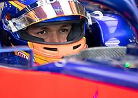 Alexander ALBON (THA) (RED BULL TORO ROSSO HONDA) during the Bahrain Grand Prix at Bahrain International Circuit, Sakhir,  on 31 March 2019. Photo by Vince  Mignott.