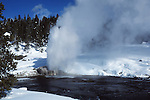 eruption of Riverside Geyser