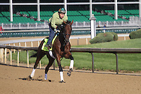 May 1, 2014: Samraat gallops in preparation for the Kentucky Derby at Churchill Downs in Louisville, KY. Zoe Metz/ESW/CSM
