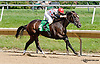 Onepointhreekarats winning The Unbridled Belle Stakes at Delaware Park on 8/15/13