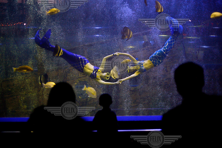 Swimmers dressed as mermaids perform for an audience in the Ocean World aquarium in Xi'an.