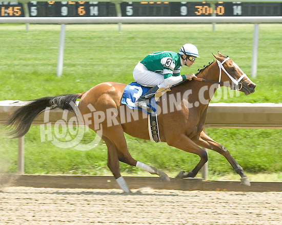 Deposit Record winning at Delaware Park on 5/23/09