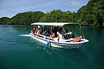 Palau, Micronesia -- Dive boat docking on Mecherchar Island, where Palau's famous Jellyfish Lake is located.