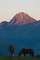 Europe/France/Midi-Pyrénées/65/Hautes-Pyrénées/Col d'Aspin:Lever de soleil sur le Pic du Midi de Bigorre et la Vallée de Campan