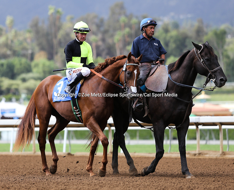 September 27, 2014 Sky Preacher with Tyler Baze aboard in the post parade for the FrontRunner Stakes at Santa Anita Park in Arcadia, CA. Zoe Metz/ESW/CSM