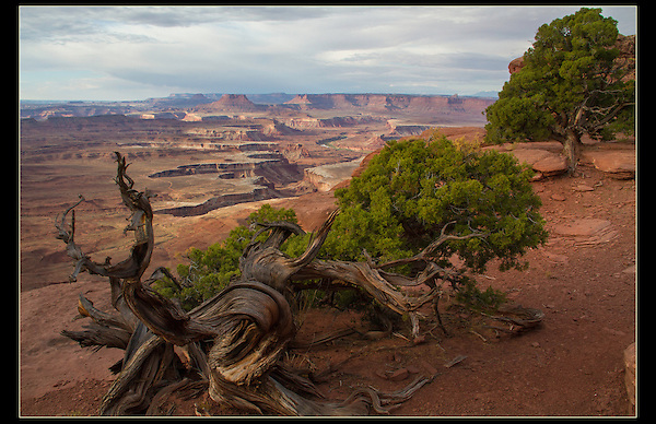 Green River Overlook, Canyonlands National Park, Utah.<br />