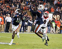Auburn Tigers vs Georgia Bulldogs, November 11, 2017