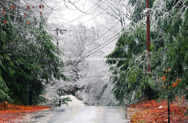 WINSTED, CT- 12 DECEMBER 2008 --121208JS01-Ice hangs from trees and power lines on Peck Road in Winsted on Friday morning. Ice and freezing rain that coated the Northwest Corner on Friday knocked out power and downed trees in the area. <br /> Jim Shannon / Republican-American