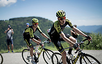 Luke Durbridge (AUS/Mitchelton-Scott) up the Cima Campo climb<br /> <br /> Stage 20: Feltre to Croce D'Aune-Monte Avena (194km)<br /> 102nd Giro d'Italia 2019<br /> <br /> ©kramon