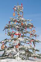 Weihnachtsbaum für Tiere