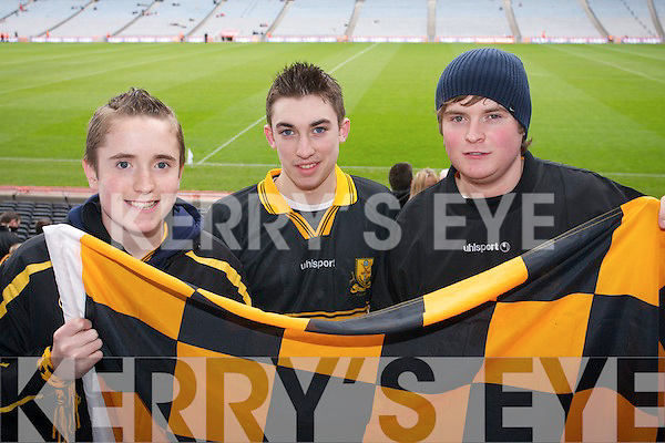 CHEERING: Ignatius Curtin, Eoin Clifton and John Curtin from Killarney cheering on the players at the Crokes v Crossmaglen All Ireland Senior Club Final in Croke Park on Saturday. .