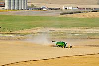 Combine harvesting duram wheat<br /> Carmichael<br /> Saskatchewan<br /> Canada