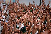 SÃO PAULO,SP, 24.05.2015 - PALMEIRAS-GOIÁS - Torcida do Palmeiras durante partida contra o Goiás jogo válido pela terceira rodada do Campeonato Brasileiro 2015 no Allianz Parque na Barra Funda, região oeste de São Paulo, neste domingo, 24.  (Foto: Levi Bianco/Brazil Photo Press)
