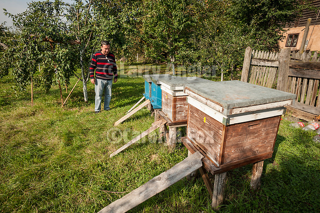 At the house of Miloje's cousin, Milan Milinkovic, Mokra Gora, Serbia--bee hives and apple trees