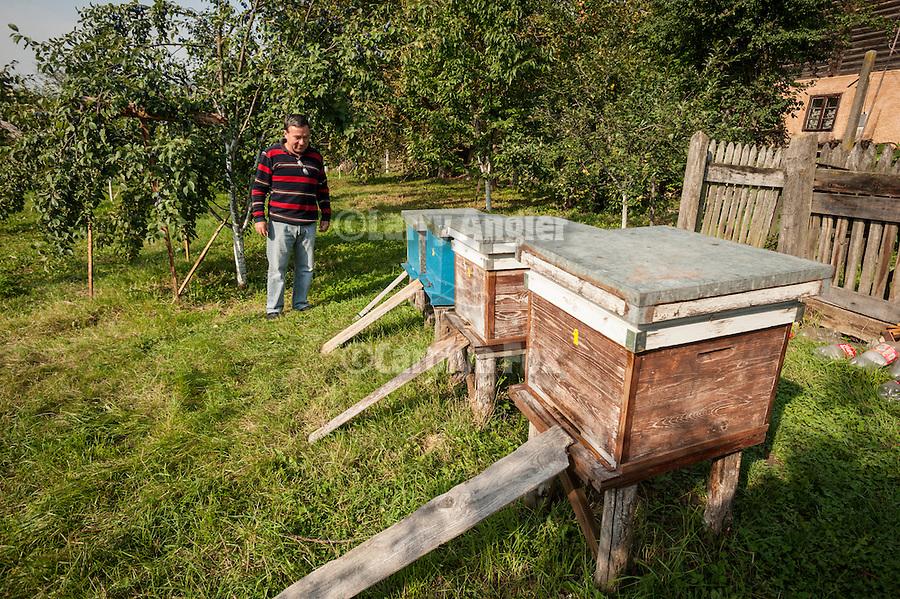At the house of Miloje's cousin, Milan Milinkovic, Mokra Gora, Serbia--bee hives and apple trees