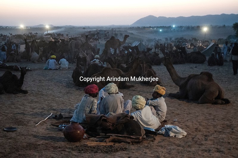 Pushkar Fair ground during dusk. Rajasthan, India.
