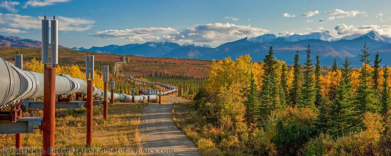 Trans Alaska oil pipeline traverses the tundra through the Alaska Range mountains, south of Delta Junction, Alaska.