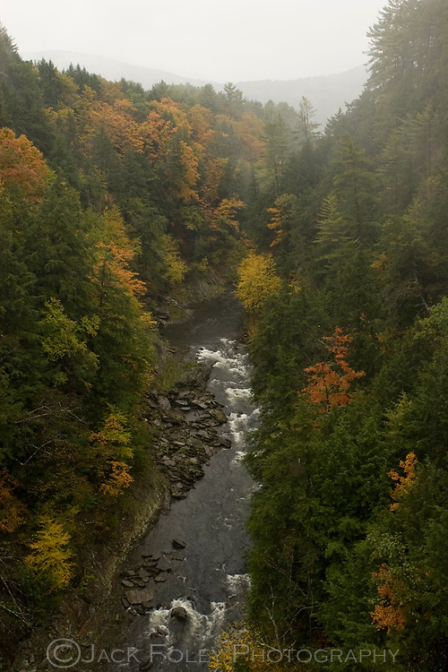 Part of the Quechee Gorge, VT, in the beginning of Autumn.