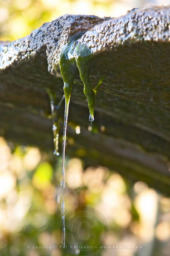 A small fountain in the garden. Clos des Iles Le Brusc Six Fours Cote d'Azur Var France