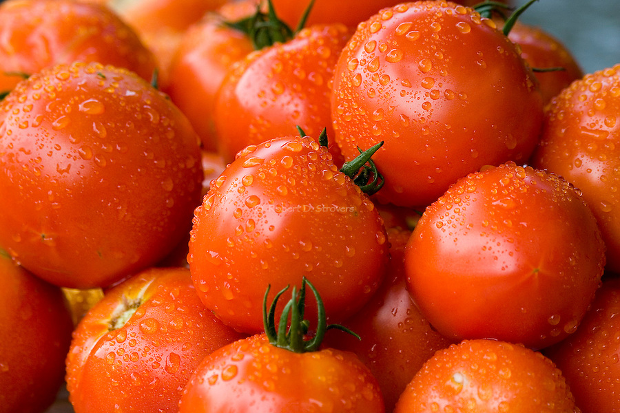 Fresh Food - Tomatoes