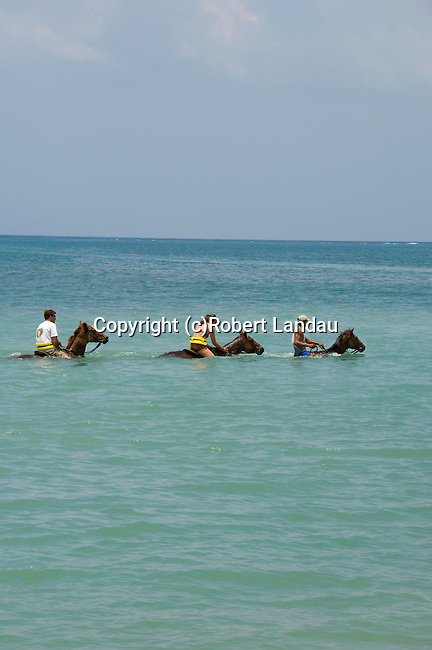 Horseback riding in Caribbean Ocean at Chukka Blue in Montego Bay