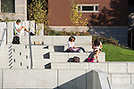 Students study outdoors on a fall day at Seattle University.
