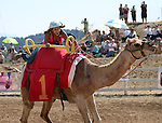 Brandi Dequin races in the 54th International Camel Races in Virginia City, Nev., on Friday, Sept. 6, 2013.  <br /> Photo by Cathleen Allison