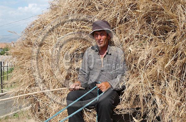 Ramiu-Korca/Korce-Albania - August 03, 2004---A farmer transporting straw with a horse drawn cart;  project area of GTZ-Wiram-Albania (German Technical Cooperation, Deutsche Gesellschaft fuer Technische Zusammenarbeit (GTZ) GmbH); agriculture-portrait---Photo: Horst Wagner/eup-images